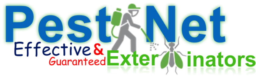 PEST NET, FUMIGATION SERVICES IN KENYA, PEST CONTROL SERVICES IN KENYA, GUARANTEED PEST CONTROL SERVICES IN KENYA, FUMIGATION IN NAIROBI KENYA, FUMIGATION SERVICES IN NAIROBI KENYA, PESTS, EXPERT PEST CONTROL SERVICES IN KENYA, FUMIGATION IN NAIROBI KENYA, PEST CONTROL SERVICES IN NAIROBI, PEST CONTROL AND FUMIGATION SERVICES, FUMIGATION AND PEST CONTROL SERVICES, PEST CONTROL, PEST CONTROL IN NAIROBI KENYA, PESTS CONTROL, PEST CONTROL IN KENYA, KENYA PEST, FUMIGATION COMPANIES IN NAIROBI, KENYA FUMIGATION, KENYA PEST CONTROL, FUMIGATION SERVICES IN NAIROBI, NAIROBI PESTS EXTERMINATOR, PEST FUMIGATION SERVICES IN KENYA, FUMIGATION & PEST CONTROL COMPANY IN KENYA, PROFESSIONAL FUMIGATION SERVICES IN KENYA, PEST CONTROL SERVICES PRICES, HOW MUCH IS PEST CONTROL SERVICES, COST OF FUMIGATION SERVICES, PEST CONTROL SERVICE PROVIDER IN KENYA, PEST CONTROL SERVICE IN NAIROBI KENYA, PEST CONTROL COMPANIES IN KENYA, PESTNET FUMIGATION AND PEST CONTROL COMPANY, PEST CONTROL COMPANIES IN NAIROBI, FUMIGATION COMPANIES IN KENYA, PEST, PEST EXTERMINATION SERVICES IN KENYA, PEST CONTROL SERVICES NEAR ME, PEST ERADICATION SERVICES IN KENYA, FUMIGATION AND PEST CONTROL SERVICES IN KENYA, FUMIGATION SERVICES COST, FUMIGATION SERVICES NEAR ME, PROFESSIONAL PEST CONTROL SERVICES, EXPERT PEST EXTERMINATOR FOR BEDBUGS, BATS, TERMITES, COCKROACHES, MOSQUITOES, FERAL CATS, RATS CONTROL AND OTHER PEST MANAGEMENT SERVICES IN KENYA NAIROBI, MOMBASA, KISUMU WESTERN KENYA REGION, PEST CONTROL SERVICES IN THIKA, FUMIGATION SERVICES IN THIKA, BEES CONTROL SERVICES IN THIKA, BED BUGS CONTROL SERVICES IN THIKA, TERMITE CONTROL SERVICES IN THIKA, COCKROACH CONTROL SERVICES IN THIKA, PEST CONTROL SERVICES IN KIAMBU, FUMIGATION SERVICES IN KIAMBU, BEES CONTROL SERVICES IN KIAMBU, BED BUGS CONTROL SERVICES IN KIAMBU, TERMITE CONTROL SERVICES IN KIAMBU, COCKROACH CONTROL SERVICES IN KIAMBU, PEST CONTROL SERVICES IN KIAMBU,  PEST CONTROL SERVICES IN MERU, FUMIGATION SERVICES IN MERU, BEES CONTROL SERVICES IN MERU, BED BUGS CONTROL SERVICES IN MERU, TERMITE CONTROL SERVICES IN MERU, COCKROACH CONTROL SERVICES IN MERU, PEST CONTROL SERVICES IN MERU, PEST CONTROL SERVICES IN MACHAKOS, FUMIGATION SERVICES IN MACHAKOS, BEES CONTROL SERVICES IN MACHAKOS, BED BUGS CONTROL SERVICES IN MACHAKOS, TERMITE CONTROL SERVICES IN MACHAKOS, COCKROACH CONTROL SERVICES IN MACHAKOS, PEST CONTROL SERVICES IN MACHAKOS, PEST CONTROL SERVICES IN NAIROBI, FUMIGATION SERVICES IN NAIROBI, BEES CONTROL SERVICES IN NAIROBI, BED BUGS CONTROL SERVICES IN NAIROBI, TERMITE CONTROL SERVICES IN NAIROBI, COCKROACH CONTROL SERVICES IN NAIROBI, PEST CONTROL SERVICES IN NAIROBI, PEST CONTROL SERVICES IN KENYA, FUMIGATION SERVICES IN KENYA, BEES CONTROL SERVICES IN KENYA, BED BUGS CONTROL SERVICES IN KENYA, TERMITE CONTROL SERVICES IN KENYA, COCKROACH CONTROL SERVICES IN KENYA, PEST CONTROL SERVICES IN KENYA, PEST CONTROL SERVICES IN MERU, FUMIGATION SERVICES IN MERU, BEES CONTROL SERVICES IN MERU, BED BUGS CONTROL SERVICES IN MERU, TERMITE CONTROL SERVICES IN MERU, COCKROACH CONTROL SERVICES IN MERU, PEST CONTROL SERVICES IN MERU, FUMIGATION SERVICE COST IN KENYA, FUMIGATION COST IN KENYA, FUMIGATION PRICES IN KENYA, FUMIGATION PRICE IN NAIROBI, PEST CONTROL CHARGES IN KENYA, PEST CONTROL COST IN KENYA,  FUMIGATION CHARGE IN MOMBASA, BEES removal service Near Me, BEES removal service in Kenya, BEES removal service chemical, BEES removal Chemical, TERMITE CONTROL PESTICIDE KENYA, TERMITE CONTROL IN KENYA, TERMITE CONTROL INSECTICIDE, BEST CHEMICAL FOR BED BUGS IN KENYA, BEST INSECRICIDE TO KILL BED BUGS, BEST INSECTICIDE FOR BED BUGS IN KENYA, PEST CONTROL SERVICES IN KITENGELA, FUMIGATION SERVICES IN KITENGELA, BEES CONTROL SERVICES IN KITENGELA, BED BUGS CONTROL SERVICES IN KITENGELA, TERMITE CONTROL SERVICES IN KITENGELA, COCKROACH CONTROL SERVICES IN KITENGELA, PEST CONTROL SERVICES IN KITENGELA, FUMIGATION SERVICE COST IN KENYA, FUMIGATION COST IN KENYA, FUMIGATION PRICES IN KENYA, FUMIGATION PRICE IN NAIROBI, PEST CONTROL CHARGES IN KENYA, PEST CONTROL COST IN KENYA, PEST CONTROL SERVICES IN MACHAKOS, FUMIGATION IN MACHAKOS, PEST CONTROL IN MACHAKOS, BED BUGS CONTROL SERVICES IN MACHAKOS, BEDBUGS CONTROL IN MACHAKOS, BEDBUGS CONTROL IN MACHAKOS, COCKROACH CONTROL IN MACHAKOS, COCKROACHES CONTROL SERVICES IN MACHAKOS, WASPS CONTROL IN MACHAKOS, WASPS CONTROL SERVICES IN MACHAKOS, RATS CONTROL SERVICES IN MACHAKOS, RATS CONTROL IN MACHAKOS, BEES CONTROL SERVICES IN MACHAKOS, BEES CONTROL IN MACHAKOS, BEST PEST CONTROL SERVICES IN MACHAKOS, TOP PEST CONTROL IN MACHAKOS, MICE CONTROL IN MACHAKOS, FUMIGATION IN MACHAKOS COUNTY, BEST PEST CONTROL IN MACHAKOS COUNTY, ANTS CONTROL IN MACHAKOS, ANTS CONTROL IN HOUSE, ANTS CONTROL SERVICES IN MACHAKOS, FLIES CONTROL SERVICES IN MACHAKOS, FLIES CONTROL IN MACHAKOS, TERMITE CONTROL CHEMICAL IN MACHAKOS, TERMITE CONTROL IN KENYA, TERMITE CONTROL CHEMICALS IN KENYA, TERMITE CONTROL IN MACHAKOS, TERMITE CONTROL NEAR ME, ANTS CONTROL NEAR ME, FLIES CONTROL NEAR ME,  PEST CONTROL SERVICES IN NAIROBI, FUMIGATION IN NAIROBI, PEST CONTROL IN NAIROBI, BED BUGS CONTROL SERVICES IN NAIROBI, BEDBUGS CONTROL IN NAIROBI, BEDBUGS CONTROL IN NAIROBI, COCKROACH CONTROL IN NAIROBI, COCKROACHES CONTROL SERVICES IN NAIROBI, WASPS CONTROL IN NAIROBI, WASPS CONTROL SERVICES IN NAIROBI, RATS CONTROL SERVICES IN NAIROBI, RATS CONTROL IN NAIROBI, BEES CONTROL SERVICES IN NAIROBI, BEES CONTROL IN NAIROBI, BEST PEST CONTROL SERVICES IN NAIROBI, TOP PEST CONTROL IN NAIROBI, MICE CONTROL IN NAIROBI, FUMIGATION IN NAIROBI COUNTY, BEST PEST CONTROL IN NAIROBI COUNTY, ANTS CONTROL IN NAIROBI, ANTS CONTROL IN HOUSE, ANTS CONTROL SERVICES IN NAIROBI, FLIES CONTROL SERVICES IN NAIROBI, FLIES CONTROL IN NAIROBI, TERMITE CONTROL CHEMICAL IN NAIROBI, TERMITE CONTROL IN KENYA, TERMITE CONTROL CHEMICALS IN KENYA, TERMITE CONTROL IN NAIROBI, TERMITE CONTROL NEAR ME, ANTS CONTROL NEAR ME, FLIES CONTROL NEAR ME,  PEST CONTROL SERVICES IN MLOLONGO, FUMIGATION IN MLOLONGO, PEST CONTROL IN MLOLONGO, BED BUGS CONTROL SERVICES IN MLOLONGO, BEDBUGS CONTROL IN MLOLONGO, BEDBUGS CONTROL IN MLOLONGO, COCKROACH CONTROL IN MLOLONGO, COCKROACHES CONTROL SERVICES IN MLOLONGO, WASPS CONTROL IN MLOLONGO, WASPS CONTROL SERVICES IN MLOLONGO, RATS CONTROL SERVICES IN MLOLONGO, RATS CONTROL IN MLOLONGO, BEES CONTROL SERVICES IN MLOLONGO, BEES CONTROL IN MLOLONGO, BEST PEST CONTROL SERVICES IN MLOLONGO, TOP PEST CONTROL IN MLOLONGO, MICE CONTROL IN MLOLONGO, FUMIGATION IN MLOLONGO COUNTY, BEST PEST CONTROL IN MLOLONGO COUNTY, ANTS CONTROL IN MLOLONGO, ANTS CONTROL IN HOUSE, ANTS CONTROL SERVICES IN MLOLONGO, FLIES CONTROL SERVICES IN MLOLONGO, FLIES CONTROL IN MLOLONGO, TERMITE CONTROL CHEMICAL IN MLOLONGO, TERMITE CONTROL IN KENYA, TERMITE CONTROL CHEMICALS IN KENYA, TERMITE CONTROL IN MLOLONGO, TERMITE CONTROL NEAR ME, ANTS CONTROL NEAR ME, FLIES CONTROL NEAR ME,  PEST CONTROL SERVICES IN KISUMU, FUMIGATION IN KISUMU, PEST CONTROL IN KISUMU, BED BUGS CONTROL SERVICES IN KISUMU, BEDBUGS CONTROL IN KISUMU, BEDBUGS CONTROL IN KISUMU, COCKROACH CONTROL IN KISUMU, COCKROACHES CONTROL SERVICES IN KISUMU, WASPS CONTROL IN KISUMU, WASPS CONTROL SERVICES IN KISUMU, RATS CONTROL SERVICES IN KISUMU, RATS CONTROL IN KISUMU, BEES CONTROL SERVICES IN KISUMU, BEES CONTROL IN KISUMU, BEST PEST CONTROL SERVICES IN KISUMU, TOP PEST CONTROL IN KISUMU, MICE CONTROL IN KISUMU, FUMIGATION IN KISUMU COUNTY, BEST PEST CONTROL IN KISUMU COUNTY, ANTS CONTROL IN KISUMU, ANTS CONTROL IN HOUSE, ANTS CONTROL SERVICES IN KISUMU, FLIES CONTROL SERVICES IN KISUMU, FLIES CONTROL IN KISUMU, TERMITE CONTROL CHEMICAL IN KISUMU, TERMITE CONTROL IN KENYA, TERMITE CONTROL CHEMICALS IN KENYA, TERMITE CONTROL IN KISUMU, TERMITE CONTROL NEAR ME, ANTS CONTROL NEAR ME, FLIES CONTROL NEAR ME, PEST CONTROL SERVICES IN THIKA, FUMIGATION IN THIKA, PEST CONTROL IN THIKA, BED BUGS CONTROL SERVICES IN THIKA, BEDBUGS CONTROL IN THIKA, BEDBUGS CONTROL IN THIKA, COCKROACH CONTROL IN THIKA, COCKROACHES CONTROL SERVICES IN THIKA, WASPS CONTROL IN THIKA, WASPS CONTROL SERVICES IN THIKA, RATS CONTROL SERVICES IN THIKA, RATS CONTROL IN THIKA, BEES CONTROL SERVICES IN THIKA, BEES CONTROL IN THIKA, BEST PEST CONTROL SERVICES IN THIKA, TOP PEST CONTROL IN THIKA, MICE CONTROL IN THIKA, FUMIGATION IN THIKA COUNTY, BEST PEST CONTROL IN THIKA COUNTY, ANTS CONTROL IN THIKA, ANTS CONTROL IN HOUSE, ANTS CONTROL SERVICES IN THIKA, FLIES CONTROL SERVICES IN THIKA, FLIES CONTROL IN THIKA, TERMITE CONTROL CHEMICAL IN THIKA, TERMITE CONTROL IN KENYA, TERMITE CONTROL CHEMICALS IN KENYA, TERMITE CONTROL IN THIKA, TERMITE CONTROL NEAR ME, ANTS CONTROL NEAR ME, FLIES  CONTROL NEAR ME,  PEST CONTROL SERVICES IN LIMURU, FUMIGATION IN LIMURU, PEST CONTROL IN LIMURU, BED BUGS CONTROL SERVICES IN LIMURU, BEDBUGS CONTROL IN LIMURU, BEDBUGS CONTROL IN LIMURU, COCKROACH CONTROL IN LIMURU, COCKROACHES CONTROL SERVICES IN LIMURU, WASPS CONTROL IN LIMURU, WASPS CONTROL SERVICES IN LIMURU, RATS CONTROL SERVICES IN LIMURU, RATS CONTROL IN LIMURU, BEES CONTROL SERVICES IN LIMURU, BEES CONTROL IN LIMURU, BEST PEST CONTROL SERVICES IN LIMURU, TOP PEST CONTROL IN LIMURU, MICE CONTROL IN LIMURU, FUMIGATION IN LIMURU COUNTY, BEST PEST CONTROL IN LIMURU COUNTY, ANTS CONTROL IN LIMURU, ANTS CONTROL IN HOUSE, ANTS CONTROL SERVICES IN LIMURU, FLIES CONTROL SERVICES IN LIMURU, FLIES CONTROL IN LIMURU, TERMITE CONTROL CHEMICAL IN LIMURU, TERMITE CONTROL IN KENYA, TERMITE CONTROL CHEMICALS IN KENYA, TERMITE CONTROL IN LIMURU, TERMITE CONTROL NEAR ME, ANTS CONTROL NEAR ME, FLIES CONTROL NEAR ME,  PEST CONTROL SERVICES IN BAMBURI MOMBASA, FUMIGATION IN BAMBURI MOMBASA, PEST CONTROL IN BAMBURI MOMBASA, BED BUGS CONTROL SERVICES IN BAMBURI MOMBASA, BEDBUGS CONTROL IN BAMBURI MOMBASA, BEDBUGS CONTROL IN BAMBURI MOMBASA, COCKROACH CONTROL IN BAMBURI MOMBASA, COCKROACHES CONTROL SERVICES IN BAMBURI MOMBASA, WASPS CONTROL IN BAMBURI MOMBASA, WASPS CONTROL SERVICES IN BAMBURI MOMBASA, RATS CONTROL SERVICES IN BAMBURI MOMBASA, RATS CONTROL IN BAMBURI MOMBASA, BEES CONTROL SERVICES IN BAMBURI MOMBASA, BEES CONTROL IN BAMBURI MOMBASA, BEST PEST CONTROL SERVICES IN BAMBURI MOMBASA, TOP PEST CONTROL IN BAMBURI MOMBASA, MICE CONTROL IN BAMBURI MOMBASA, FUMIGATION IN BAMBURI MOMBASA COUNTY, BEST PEST CONTROL IN BAMBURI MOMBASA COUNTY, ANTS CONTROL IN BAMBURI MOMBASA, ANTS CONTROL IN HOUSE, ANTS CONTROL SERVICES IN BAMBURI MOMBASA, FLIES CONTROL SERVICES IN BAMBURI MOMBASA, FLIES CONTROL IN BAMBURI MOMBASA, TERMITE CONTROL CHEMICAL IN BAMBURI MOMBASA, TERMITE CONTROL IN KENYA, TERMITE CONTROL CHEMICALS IN KENYA, TERMITE CONTROL IN BAMBURI MOMBASA, TERMITE CONTROL NEAR ME, ANTS CONTROL NEAR ME, FLIES CONTROL NEAR ME,  HOTEL FUMIGATION IN BAMBURI MOMBASA, HOTEL FUMIGATION SERVICES IN BAMBURI MOMBASA, HOTEL FUMIGATION SERVICES, FLIES CONTROL IN HOTEL, FLIES CONTROL IN A CAFÉ, FLIES CONTROL IN RESTAURANT, BEST PESTICIDE FOR BED BUGS, BEST INSECTICIDES FO BED BUGS IN BAMBURI MOMBASA, BEST PESTCIDE FOR BED BUGS IN BAMBURI MOMBASA,  termite control chemicals, termite control chemicals in BAMBURI MOMBASA, TERMITE INSECTICIDE, TERMITE CONTROL INSECTICIDE IN BAMBURI MOMBASA, TERMITE CONTROL CHEMICALS IN BAMBURI MOMBASA, TERMITE CONTROL IN CONSTRUCTION, TERMITE CONTROL IN BAMBURI MOMBASA, TERMITES CONTROL IN BAMBURI MOMBASA, bed bugs control services in Nairobi, Bed bugs Control in Nairobi, HOTEL FUMIGATION IN KENYA, HOTEL FUMIGATION SERVICES IN KENYA, HOTEL FUMIGATION SERVICES, FLIES CONTROL IN HOTEL, FLIES CONTROL IN A CAFÉ, FLIES CONTROL IN RESTAURANT, BEST PESTICIDE FOR BED BUGS, BEST INSECTICIDES FO BED BUGS IN KENYA, BEST PESTCIDE FOR BED BUGS IN KENYA,  termite control chemicals, termite control chemicals in KENYA, TERMITE INSECTICIDE, TERMITE CONTROL INSECTICIDE IN KENYA, TERMITE CONTROL CHEMICALS IN KENYA, TERMITE CONTROL IN CONSTRUCTION, TERMITE CONTROL IN KENYA, TERMITES CONTROL IN KENYA, bed bugs control services in Nairobi, Bed bugs Control in Nairobi